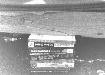 Books holding bed
